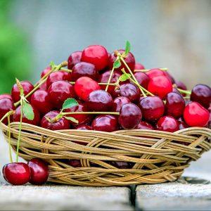 500mg Cherry CBD Oil